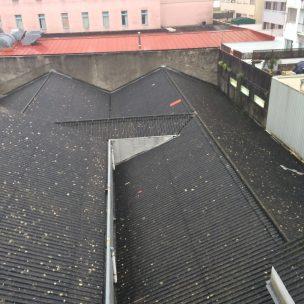 Impermeabilizacion de cubierta con poliurea en Pontevedra 1